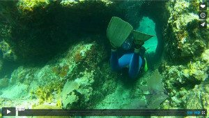 Scuba Diving Clubs Manchester